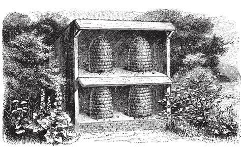 build  bee skep modern farmer