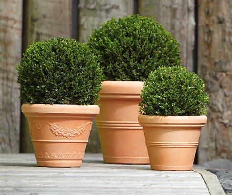 vasi terracotta grandi vasi grandi da giardino per arredare fai da te in giardino