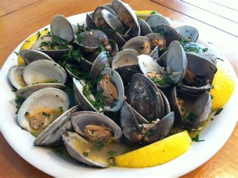 sauteed clams  white wine sauce recipe feature dish