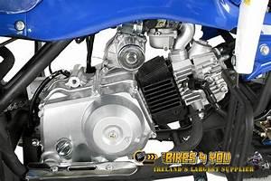 Quad 125cc Panthera : panthera 3g8 light 125cc 3 speed semi automatic reverse 3x hydraulic disc brakes 8 wheels ~ Melissatoandfro.com Idées de Décoration