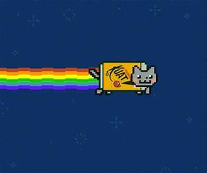 Cat Flying GIF - Cat Flying Nyan - Discover & Share GIFs