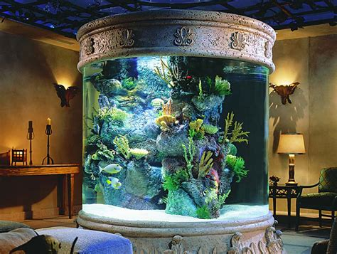 luring interior living room decoration idea with cool aquariums with big corral also