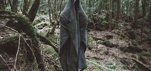 Japan's Mysterious Suicide Forest 'Aokigahara' | Disclose.tv