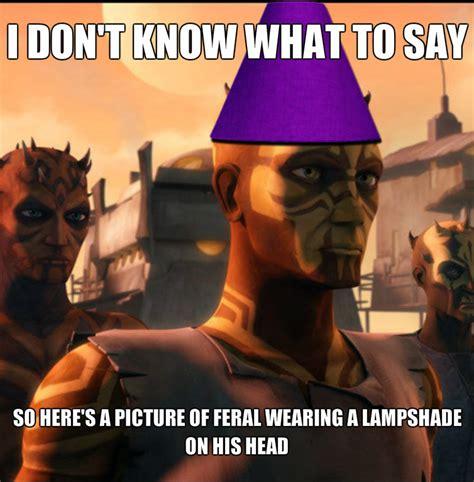 Clone Wars Memes - clone wars feral meme by spiritbird 250 on deviantart