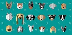 Cute Minimalist Dog Breeds Illustrations