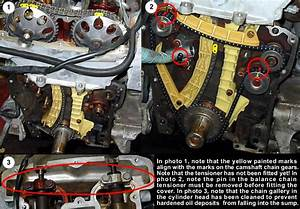 Serioussaab Procedures Archive  Renewing The Timing Chains
