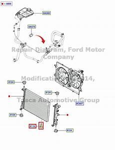 New Oem Radiator Drain Plug Ford Focus Contour Mustang