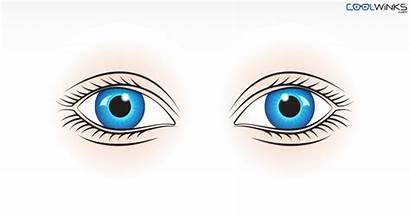 Eyes Eye Exercises Stretching Yoga Easy Coolwinks