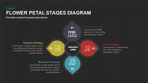Flower Petal Stages Diagram Powerpoint  U0026 Keynote Template