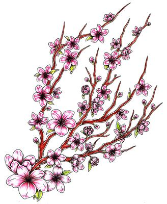 japanese cherry blossom design cherry blossom branch drawing clipart best