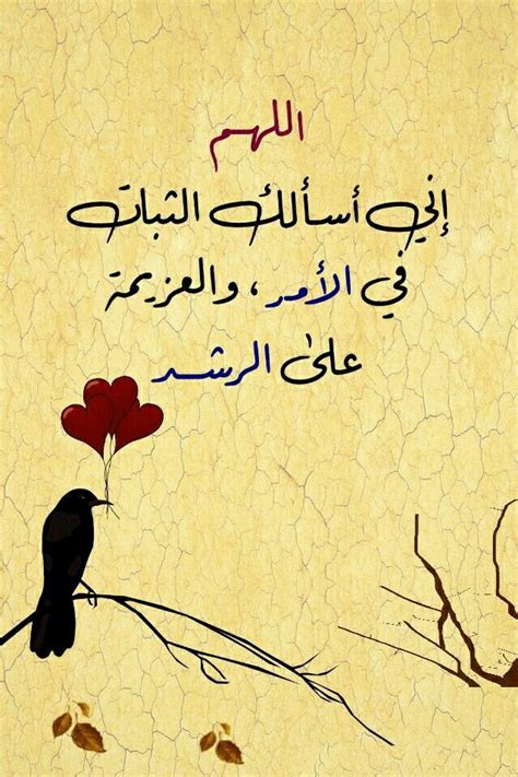 pin  hussein kamel  arabic quotes islamic pictures
