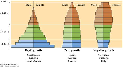 Age Structure Diagram by Ecology 2 Flashcards At Aquinas College Studyblue