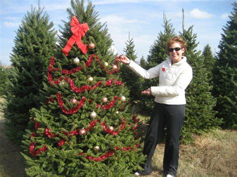 christmas tree farm somerset nj home cut your own trees tree farm somerset wi