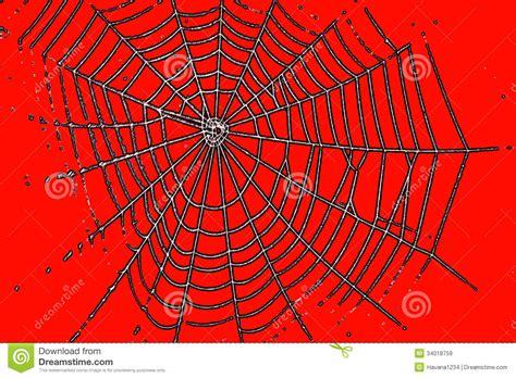 un mod 232 le de toile d araign 233 e pour la couleur d orange de images libres de droits