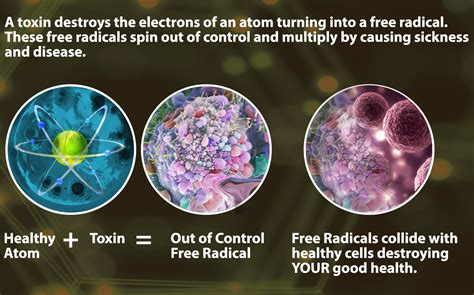Special Nutrients That Turn Off Cancer Cells