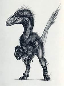 Deinonychus by AntarcticSpring on DeviantArt