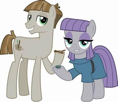 Maud Mlp Pie Mudbriar Pony Deviantart Jhayarr23