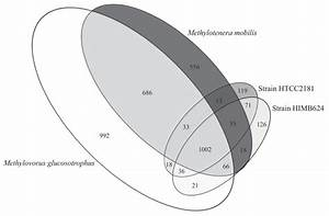 Proportional Venn Diagram Depicting The Shared And Unique