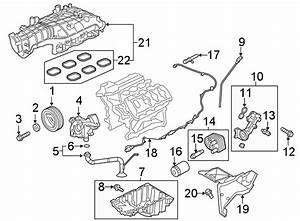 Ford Expedition Gasket  Manifold  Intake  3 5 Liter W