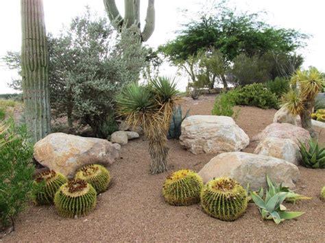 xeriscape design ideas 8 steps to diy xeriscape landscape design arizona desert xeriscape