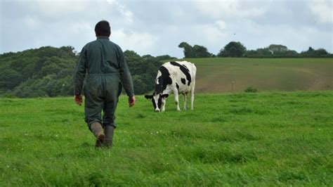 chambres des metiers agriculteur un métier qui rend heureux enquête nouvel