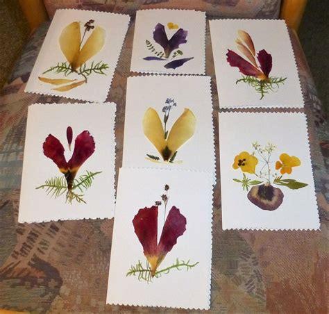 Blätter Pressen Wie Lange by Bl 252 Ten Pressen Wie Blumen Dekoration Ideen