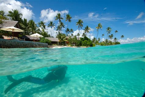 comfortable sofa sets diversion dive travel australia dive travel and diving