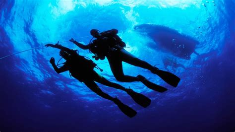 free scuba diving wallpapers wallpaper cave