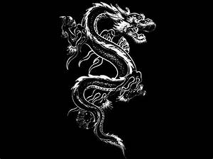 Black And White Images Of Dragons 8 Hd Wallpaper ...
