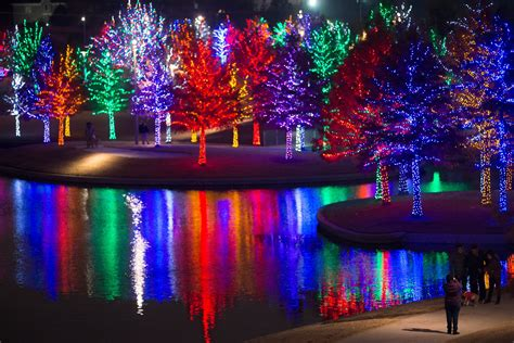 zootastic park christmas wonderland lights where to find christmas in dallas michelle lynne