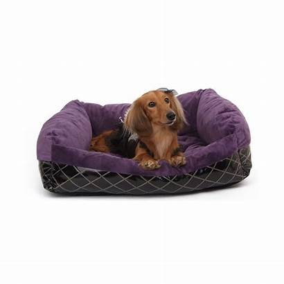 Purple Puppy Angel Couch Sleeper Cozy Luxury