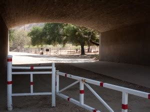 hermon dog park pictures  owner reviews