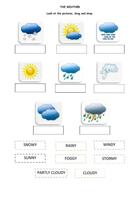 Weather The Weather Worksheet