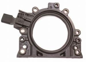 Crank Plate Flange Seal  U0026 Sensor 05