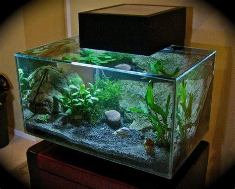 Fluval Edge Aquarium Review  Aquatic Mag