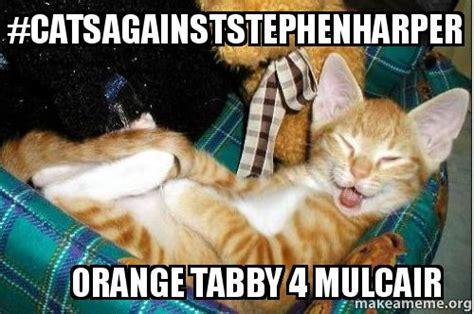 Tabby Meme - catsagainststephenharper orange tabby 4 mulcair make a meme