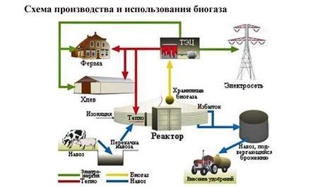 Биомасса – аккумулятор энергии . 1.5. Энергетическая емкость