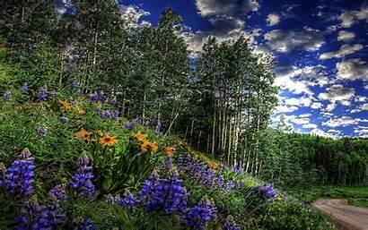 Nature 3d Wallpapers Desktop