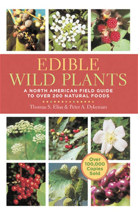 edible wild plants  north american field guide