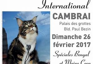 Espace Confort Cambrai : salon f lin international cambrai ~ Medecine-chirurgie-esthetiques.com Avis de Voitures