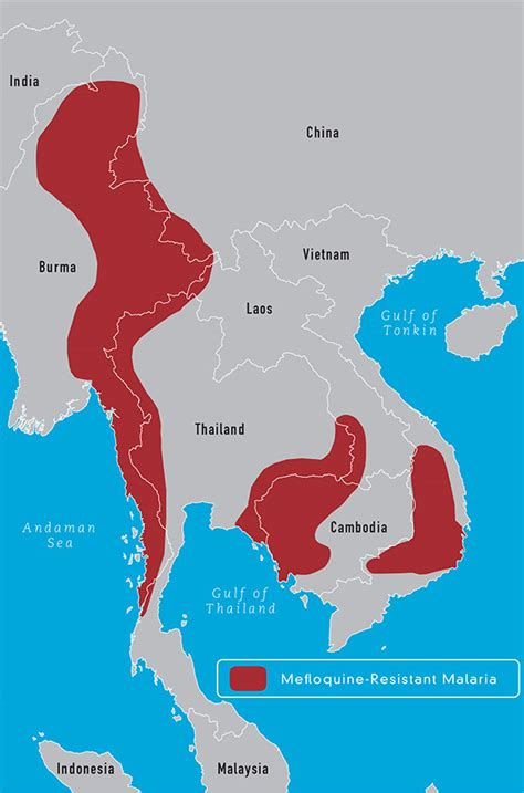 malaria endemic  resistance patterns   world
