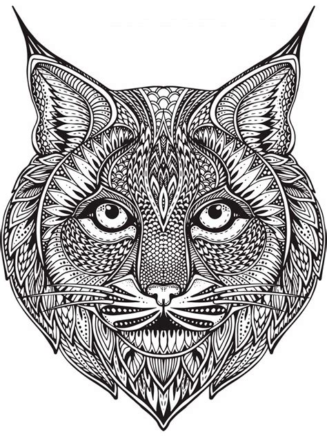 lynx coloring pages  adults printable   lynx coloring pages