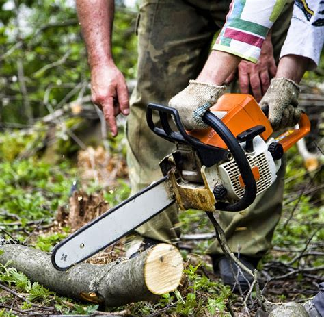 hand tools electric power tools: COMMON FEATURES OF A CHAINSAW