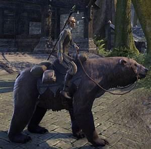 Elder Scrolls Online Cave Bear - ESO Fashion