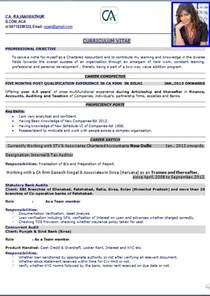 Top 10 Resume Formats For Engineering Freshers by Top 10 Resume Templates