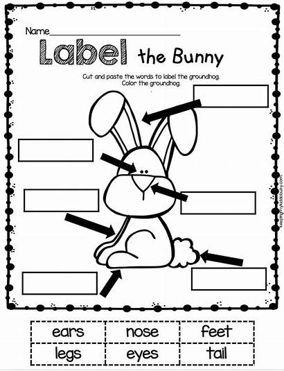 Easter Kindergarten Worksheets Worksheet Bunny English Pages