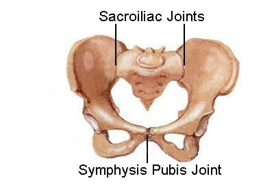 Tulang Gigitan Hip Bone pregnancy and pelvic girdle pgp pregnancy