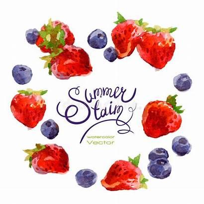 Watercolor Berries Strawberries Blueberries