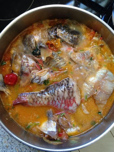 cuisine de la guadeloupe trop trop bon court bouillon de perroquet poisson