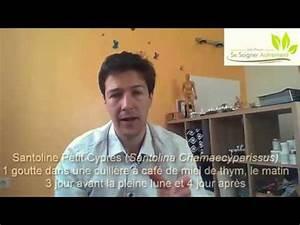 Se Débarrasser Des Guepes Maçonnes : se d barrasser des vers intestinaux youtube ~ Carolinahurricanesstore.com Idées de Décoration